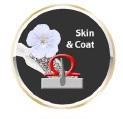 System Skin & Coat na lśniącą sierść